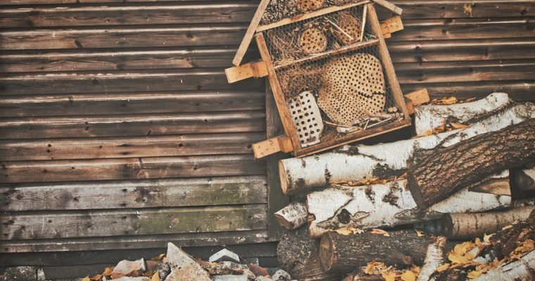 insect-hotel-3760901_960_720